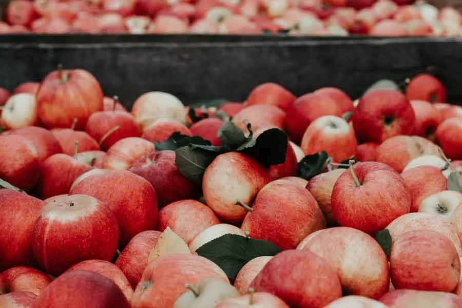 La nostra opinione sulla pectina di mele